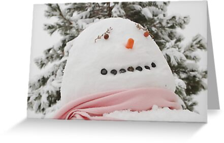 Winter Snowman by cshphotos