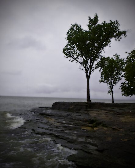 Marblehead by G. Patrick Colvin