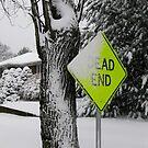 Dead end by Dalmatinka