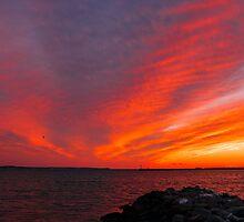 25 February 15 Sunset by JoeGeraci