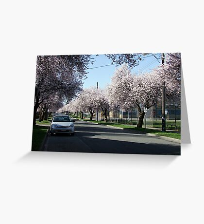 Victoria Spring Greeting Card