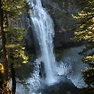 Icy Salt Creek Falls by bicyclegirl