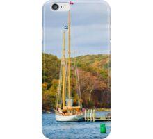 Nautical Bliss iPhone Case/Skin
