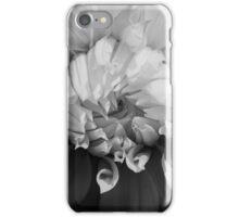 Natural Expansion iPhone Case/Skin