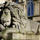 Saltaire Lion Full Length  by Lorne  Campbell