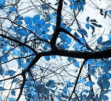 Cerulean Leaves by SRowe Art