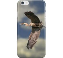 Blue Heron iPhone Case/Skin