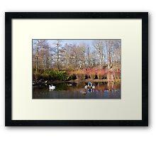 A Winter's Pond Framed Print