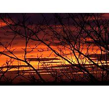 bonnie winter sunset no.2 Photographic Print