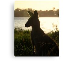 Enjoying the Sunset (Jervis Bay) Canvas Print