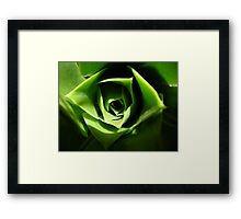 the green beauty Framed Print