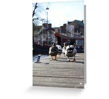 Birds Eye View Greeting Card