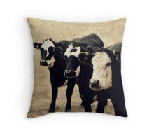 The Far Distant Hills Throw Pillow