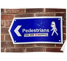 Beautiful Pedestrians Poster
