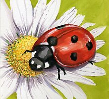 Ladybird on Daisy by FranEvans