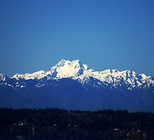Olympic Mountain Range by Loisb