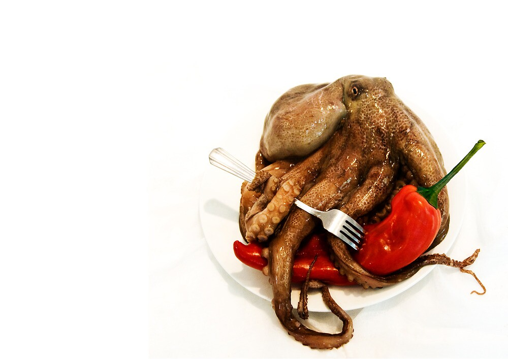 Chili Octopus by Sarah Moore