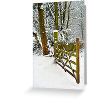 This way to the snow Greeting Card
