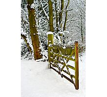 This way to the snow Photographic Print