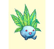 The Weed Smokemon Photographic Print