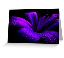 Pearl Lily. Greeting Card