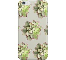 Echeveria iPhone Case/Skin