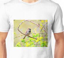 One Sparrow Unisex T-Shirt