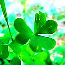 With Love on St. Patricks by vigor
