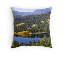 Scenic landscape in Colorado Throw Pillow