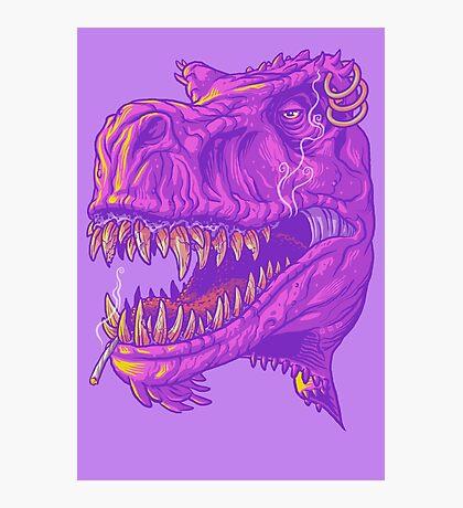 Stoner Rex Photographic Print