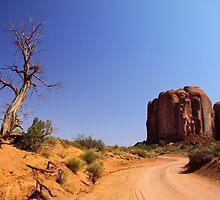 Desert driving by snehit