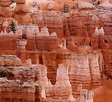 Bryce Canyon by snehit