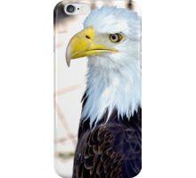 American Bald Eagle iPhone Case/Skin
