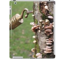 Gateway to the fairytale Kingdom iPad Case/Skin
