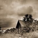 Scenic Landscape In Sepia by snehit