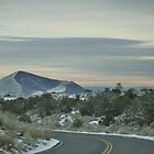 Winter Roadway by Susan Russell
