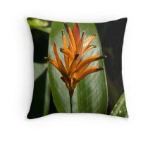 Orange Bromeliad Throw Pillow