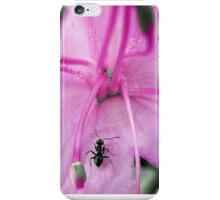 Pink Flower & Macro Ant iPhone Case/Skin