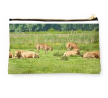 Cows on a field  Studio Pouch