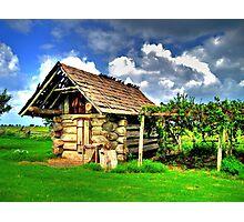 Log Cabin Photographic Print