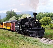 Durango And Silverton Engineer Checks The Track by Catherine Sherman
