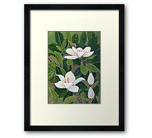 Magnolia II ~ Floral ~ Oil Painting Framed Print