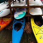 Kayaks on rack by Paul Marotta
