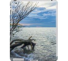sunset beach iPad Case/Skin
