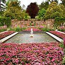 Longwood Pink Garden by Marilyn Cornwell
