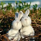 Beach Bunny Love by Anita Waters