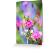 Blanche Rose Petite Greeting Card