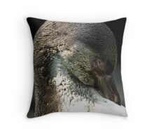 Humboldt Penguin Throw Pillow
