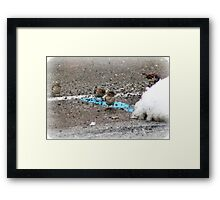 Nicotine Birds Framed Print