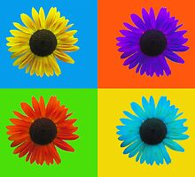 Colorful Sunflower Collage by gurso27